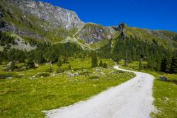 Schweiz, Berge
