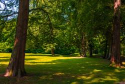 Rödelcheim, Brentanopark