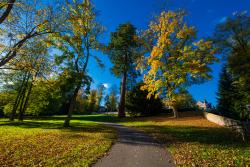 Braunfels (Park)